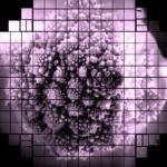 3.2 billion-pixel image captured by space camera